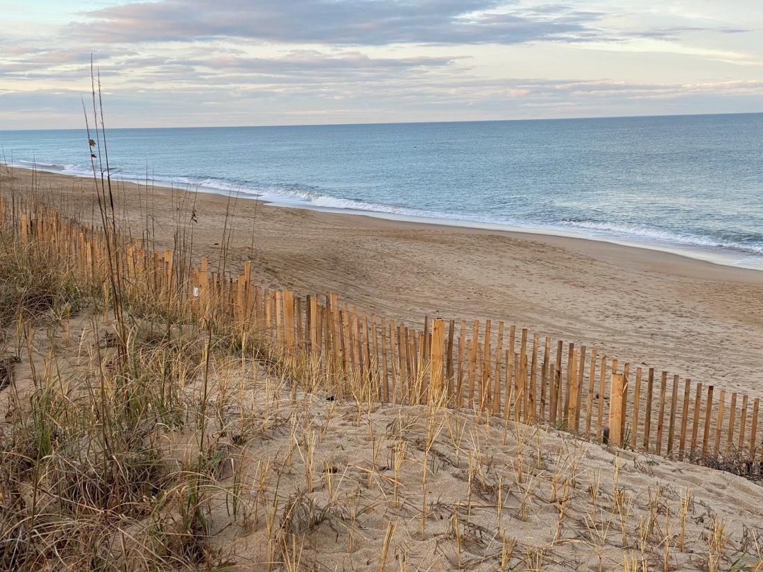 beachateastdogwoodjan4