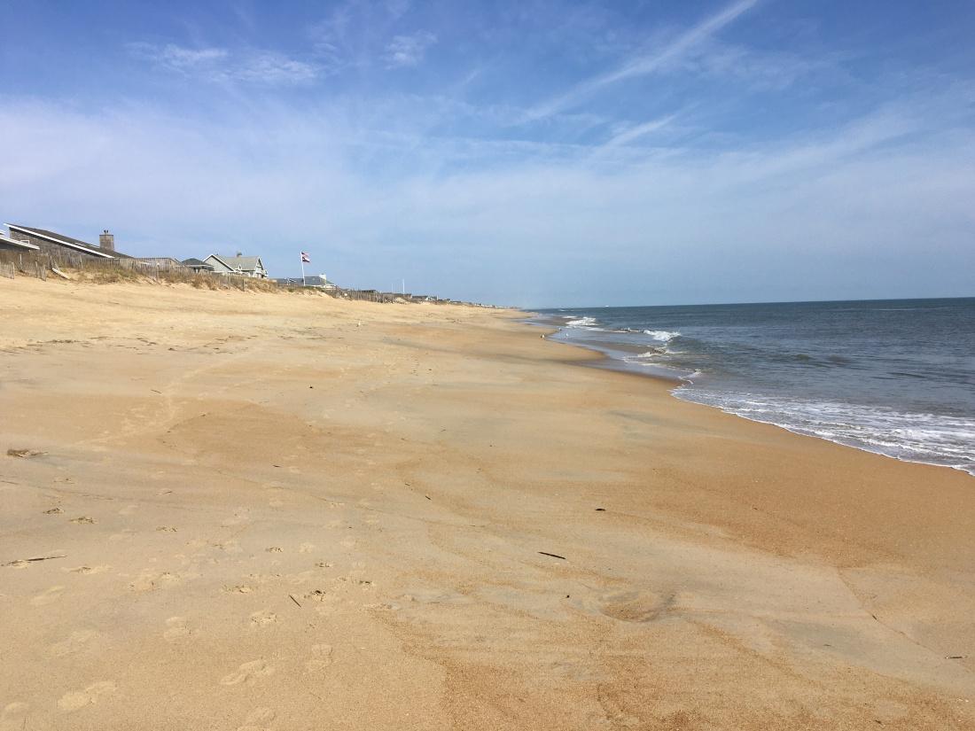 beachhires